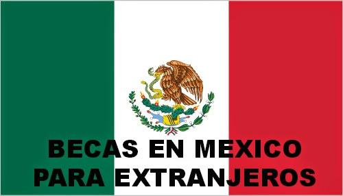 mx-lgflag